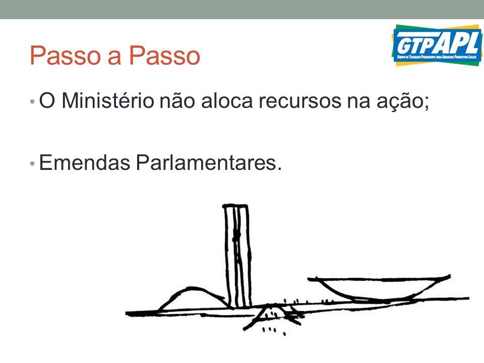 Passo a Passo O Ministério não aloca recursos na ação; Emendas Parlamentares.