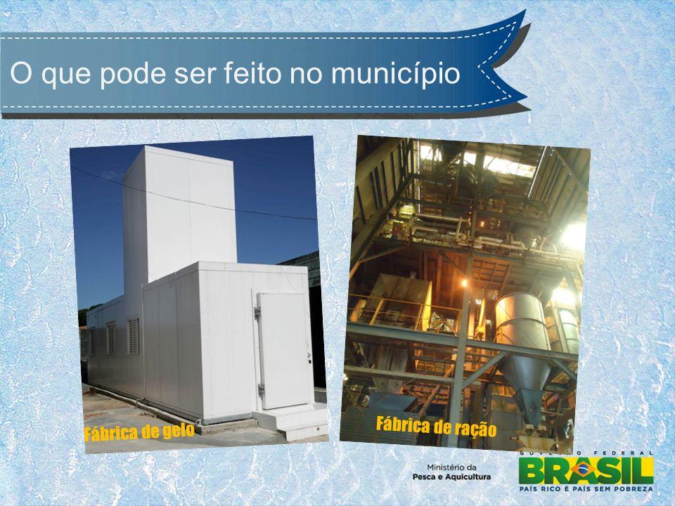 O que pode ser feito no município Fábrica de gelo Fábrica de ração