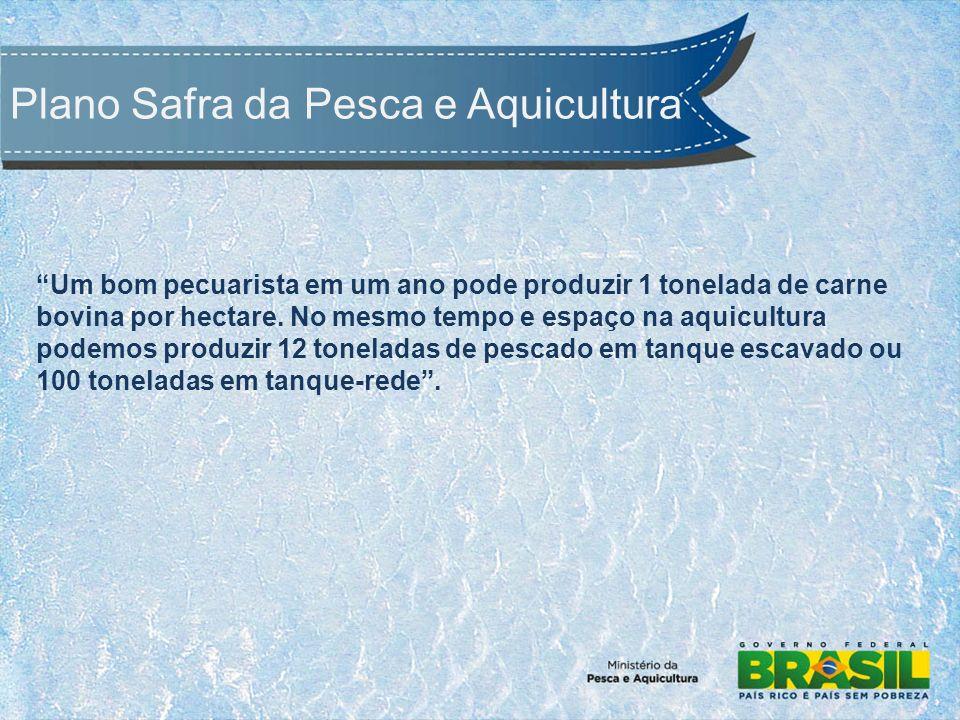 Um bom pecuarista em um ano pode produzir 1 tonelada de carne bovina por hectare.