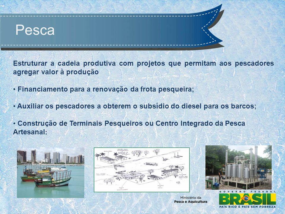 Pesca Estruturar a cadeia produtiva com projetos que permitam aos pescadores agregar valor à produção Financiamento para a renovação da frota pesqueira; Auxiliar os pescadores a obterem o subsídio do diesel para os barcos; Construção de Terminais Pesqueiros ou Centro Integrado da Pesca Artesanal ;