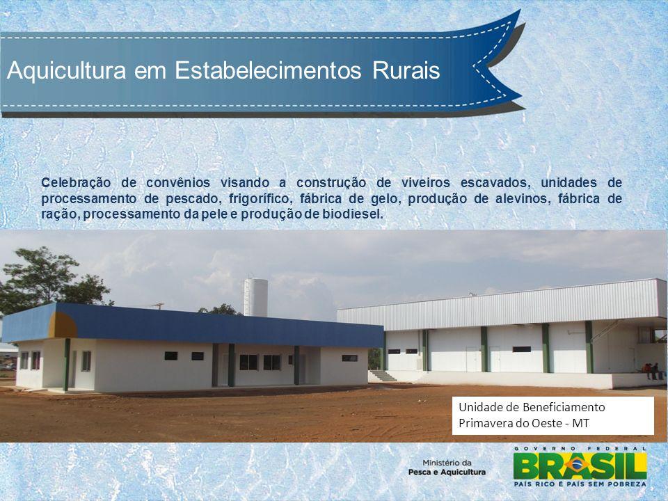 Celebração de convênios visando a construção de viveiros escavados, unidades de processamento de pescado, frigorífico, fábrica de gelo, produção de alevinos, fábrica de ração, processamento da pele e produção de biodiesel.
