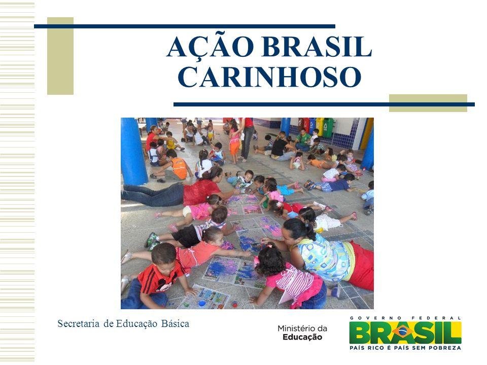 AÇÃO BRASIL CARINHOSO Secretaria de Educação Básica