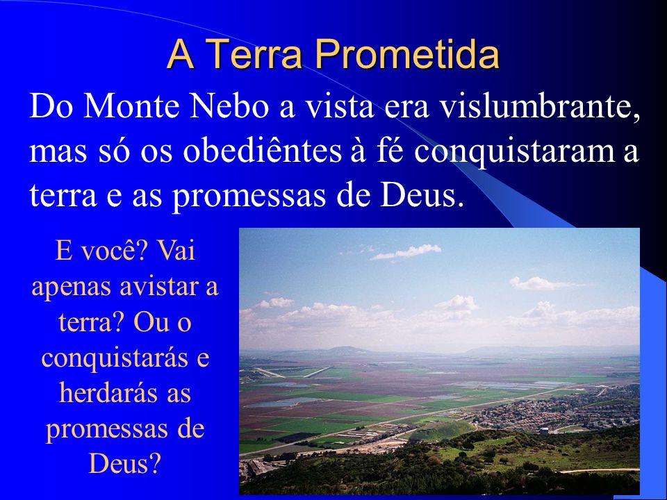 A Terra Prometida Do Monte Nebo a vista era vislumbrante, mas só os obediêntes à fé conquistaram a terra e as promessas de Deus. E você? Vai apenas av