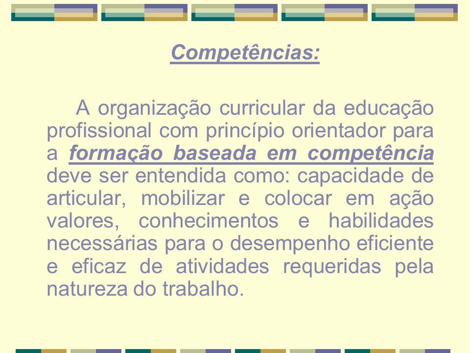 Competências: A organização curricular da educação profissional com princípio orientador para a formação baseada em competência deve ser entendida com