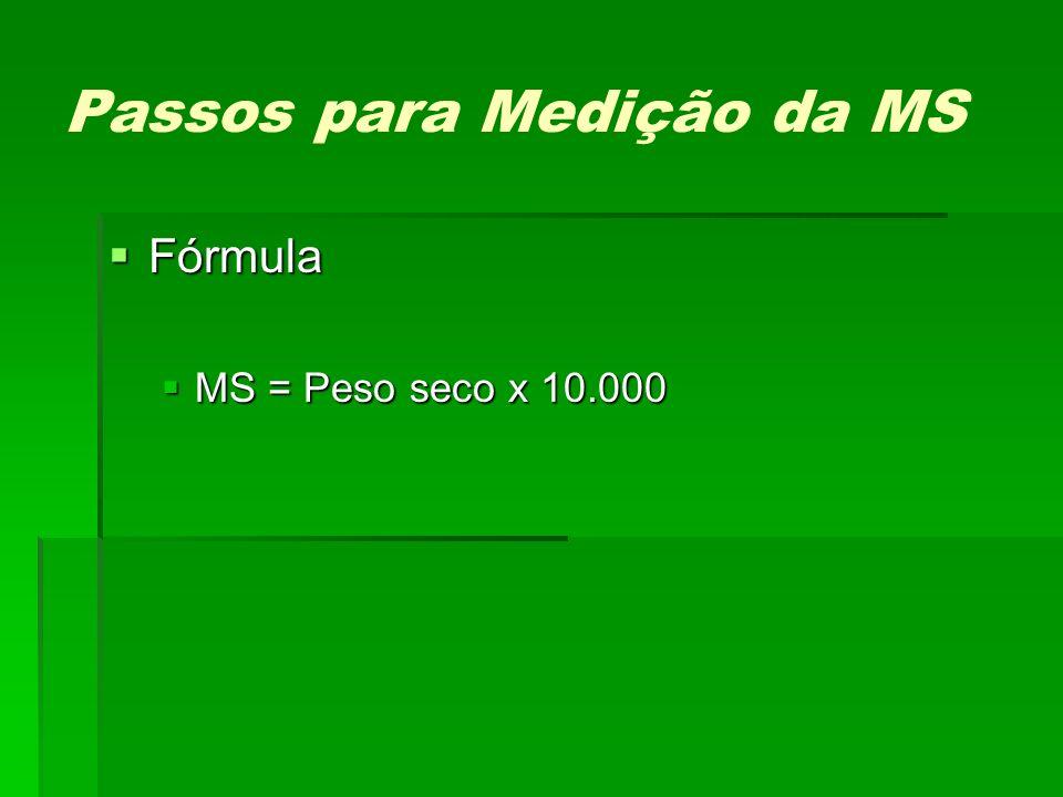 Passos para Medição da MS Fórmula Fórmula MS = Peso seco x 10.000 MS = Peso seco x 10.000