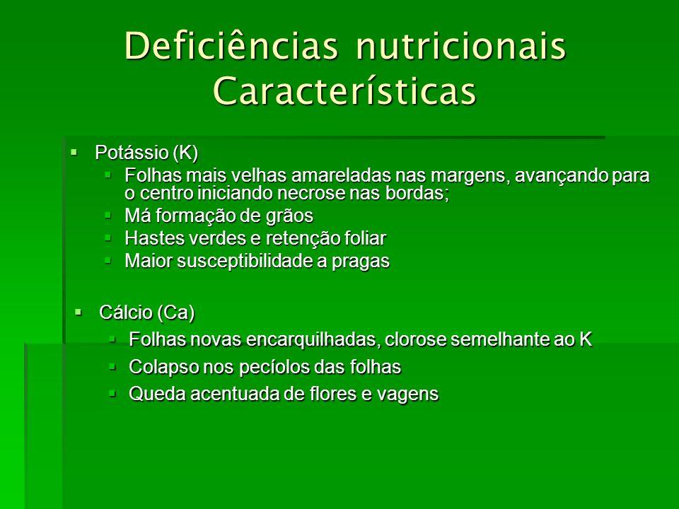 Deficiências nutricionais Características Potássio (K) Potássio (K) Folhas mais velhas amareladas nas margens, avançando para o centro iniciando necro