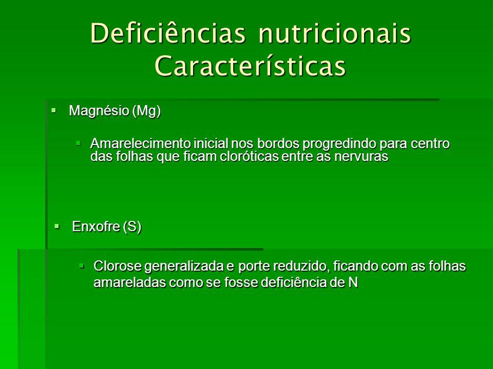 Deficiências nutricionais Características Magnésio (Mg) Magnésio (Mg) Amarelecimento inicial nos bordos progredindo para centro das folhas que ficam c