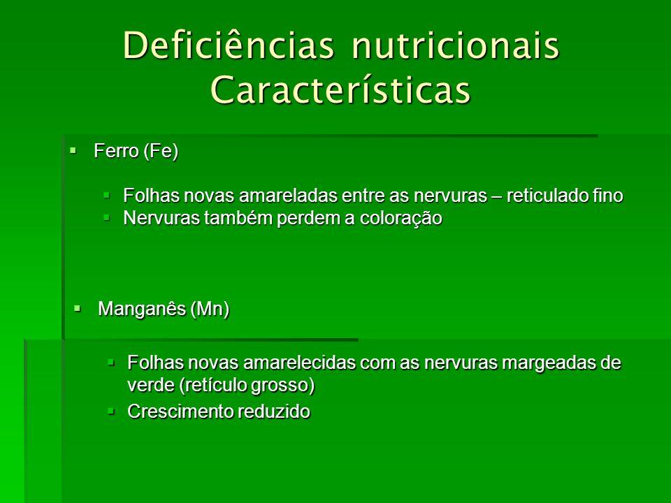 Deficiências nutricionais Características Ferro (Fe) Ferro (Fe) Folhas novas amareladas entre as nervuras – reticulado fino Folhas novas amareladas en
