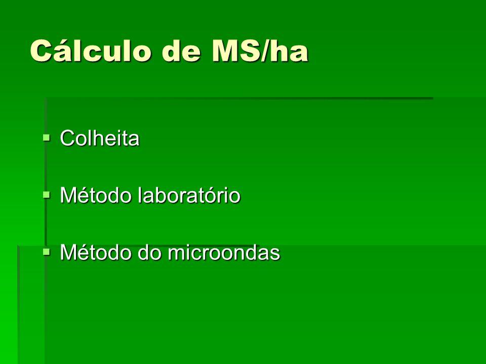 Cálculo de MS/ha Colheita Colheita Método laboratório Método laboratório Método do microondas Método do microondas