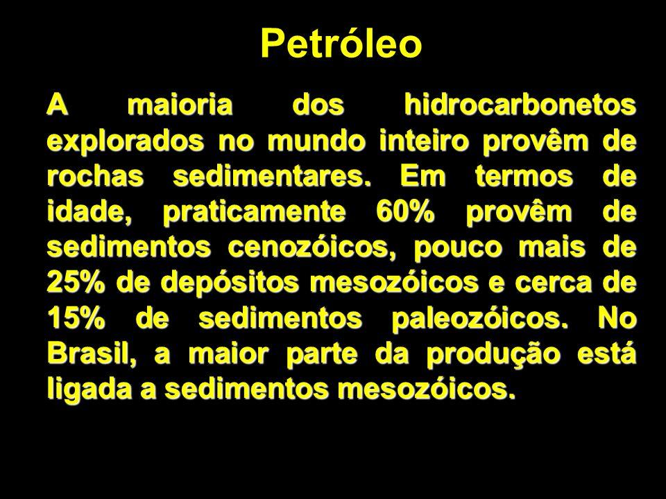 Petróleo A maioria dos hidrocarbonetos explorados no mundo inteiro provêm de rochas sedimentares. Em termos de idade, praticamente 60% provêm de sedim