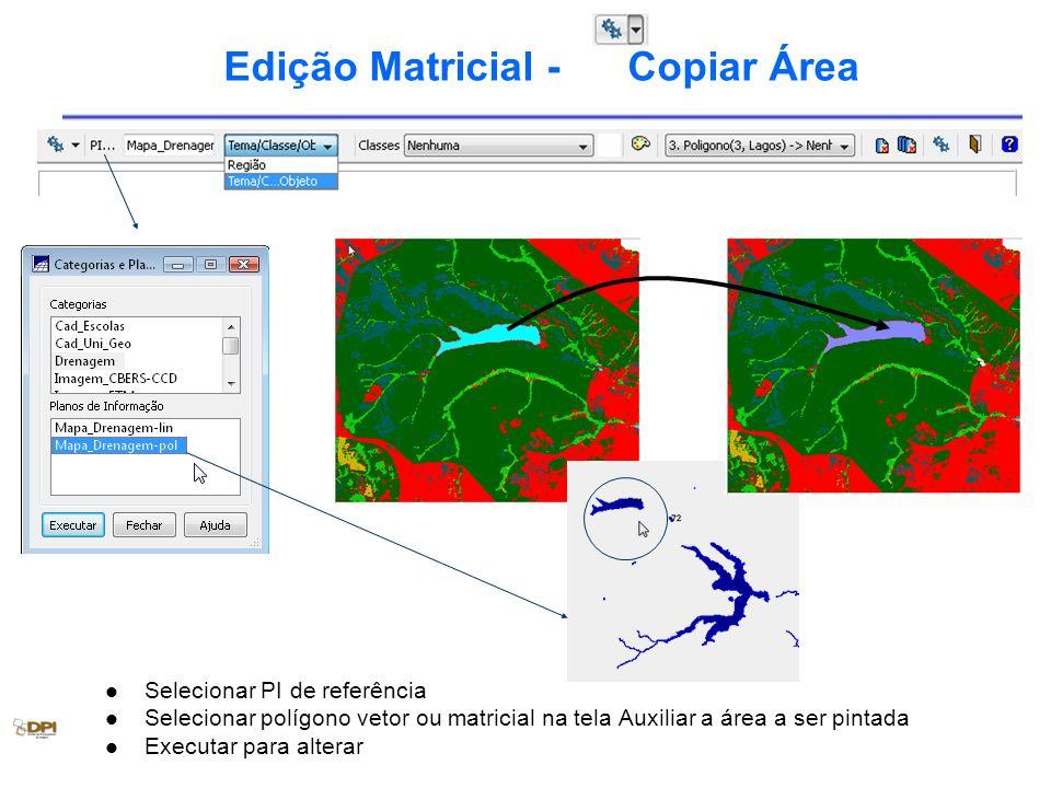 Edição Matricial - Copiar Área Selecionar PI de referência Selecionar polígono vetor ou matricial na tela Auxiliar a área a ser pintada Executar para