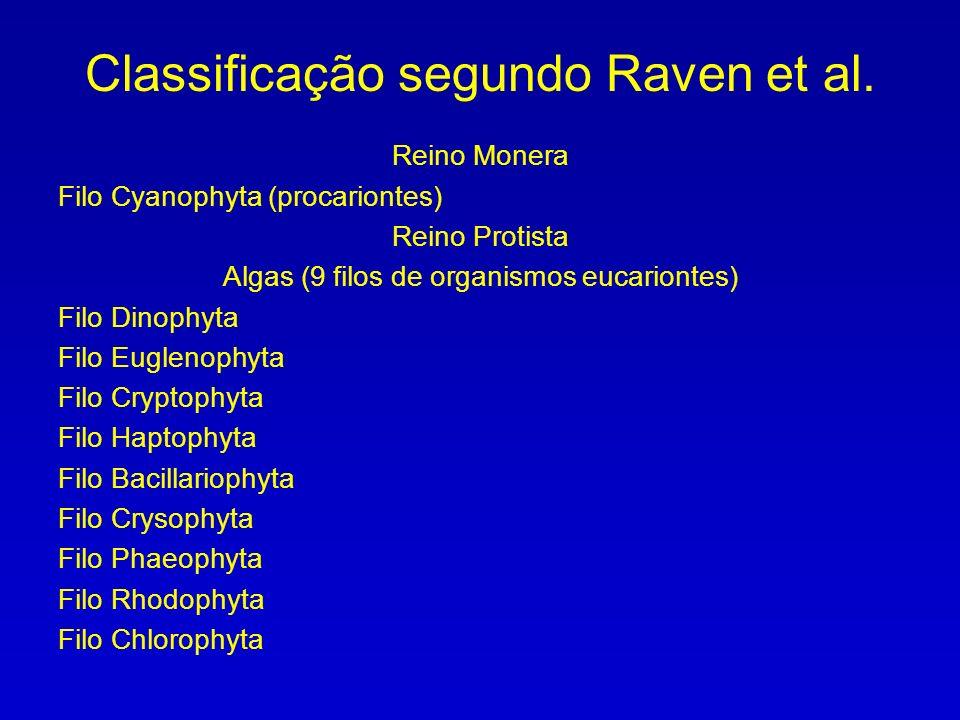 Cyanophyta Prochlorophyta Glaucophyta Euglenophyta Cryptophyta Haptophyta Dinophyta Heterokontophyta (Bacillariophyceae, Phaeophyceae, Chrysophyceae) Rhodophyta Chlorophyta Chlorarachniophyta Classificação segundo Van den Hoek et al., 2002 (11 divisões)