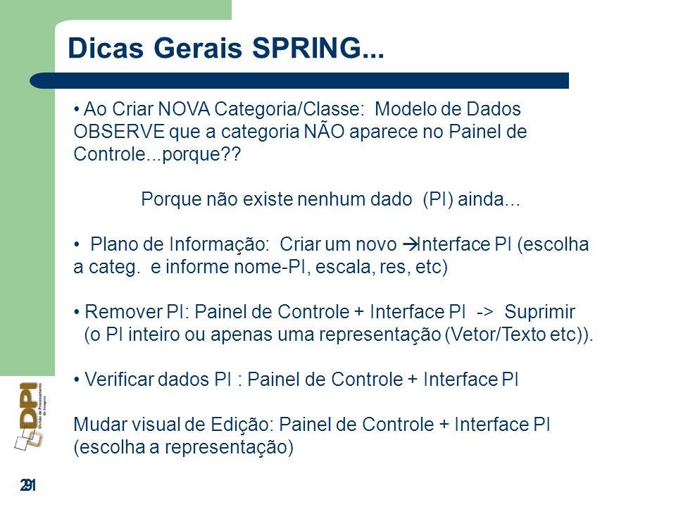 21 9 Dicas Gerais SPRING... Ao Criar NOVA Categoria/Classe: Modelo de Dados OBSERVE que a categoria NÃO aparece no Painel de Controle...porque?? Porqu