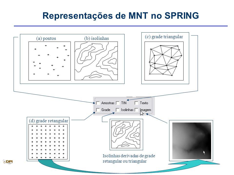 Representações de MNT no SPRING (a) pontos (c) grade triangular (b) isolinhas (d) grade retangular Isolinhas derivadas de grade retangular ou triangul