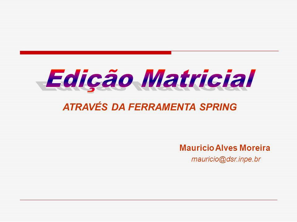 ATRAVÉS DA FERRAMENTA SPRING Mauricio Alves Moreira mauricio@dsr.inpe.br