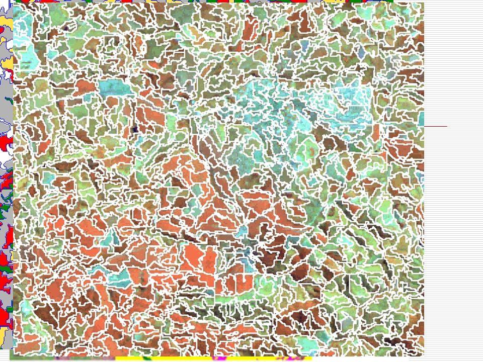 Mapa temático Matricial