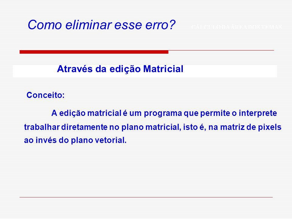 CÁLCULO DA ÁREA DOS TEMAS Como eliminar esse erro? Através da edição Matricial A edição matricial é um programa que permite o interprete trabalhar dir