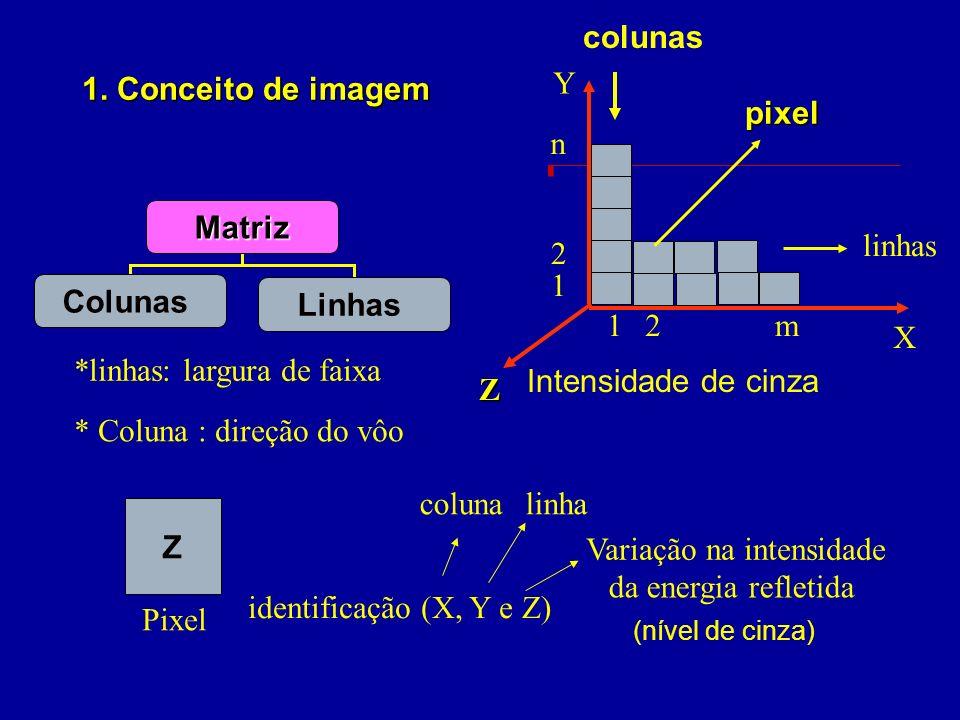1. Conceito de imagem *linhas: largura de faixa * Coluna : direção do vôo identificação (X, Y e Z) X Y colunas linhas Z Intensidade de cinza 1 2 n 12m
