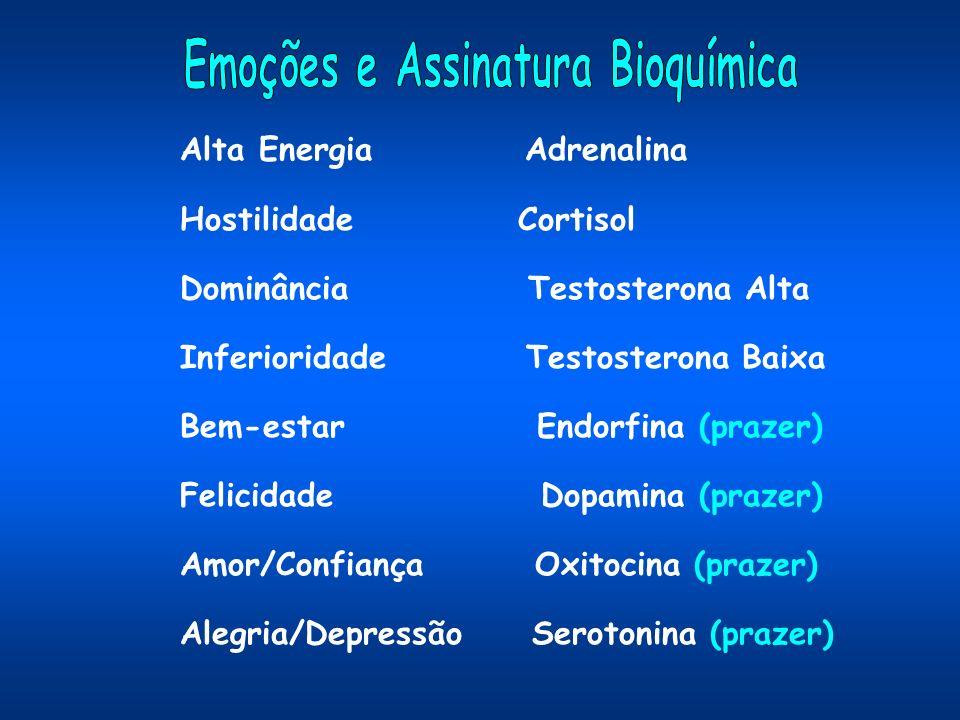 Alta Energia Adrenalina Hostilidade Cortisol Dominância Testosterona Alta Inferioridade Testosterona Baixa Bem-estar Endorfina (prazer) Felicidade Dopamina (prazer) Amor/Confiança Oxitocina (prazer) Alegria/Depressão Serotonina (prazer)