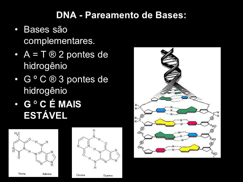 DNA - Pareamento de Bases: Bases são complementares. A = T ® 2 pontes de hidrogênio G º C ® 3 pontes de hidrogênio G º C É MAIS ESTÁVEL