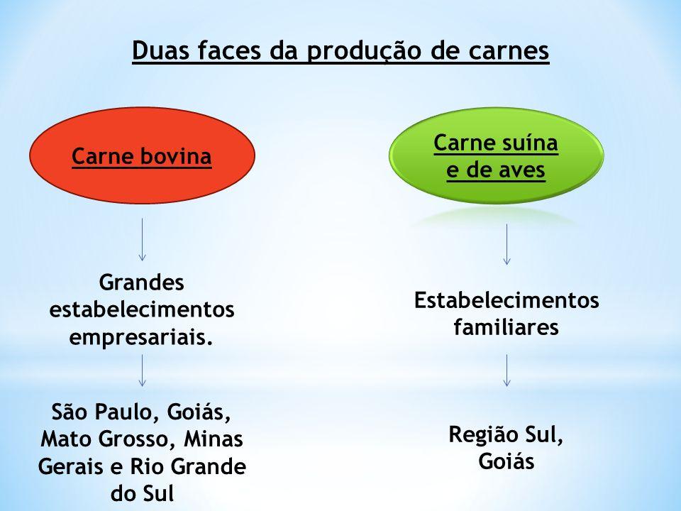 Duas faces da produção de carnes Carne bovina Grandes estabelecimentos empresariais. São Paulo, Goiás, Mato Grosso, Minas Gerais e Rio Grande do Sul E