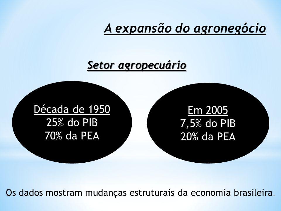 A expansão do agronegócio Década de 1950 25% do PIB 70% da PEA Em 2005 7,5% do PIB 20% da PEA Setor agropecuário Os dados mostram mudanças estruturais