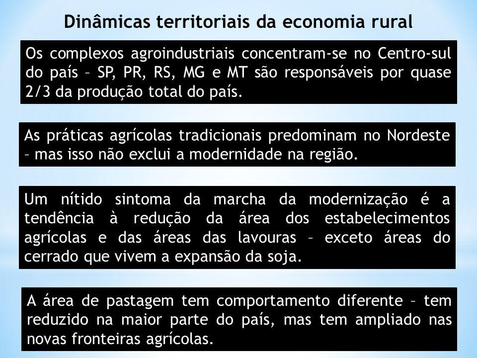 Dinâmicas territoriais da economia rural Os complexos agroindustriais concentram-se no Centro-sul do país – SP, PR, RS, MG e MT são responsáveis por q