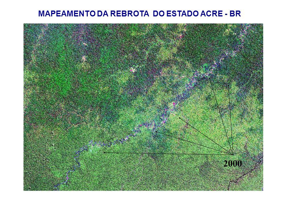 MAPEAMENTO DA REBROTA DO ESTADO ACRE - BR 2000