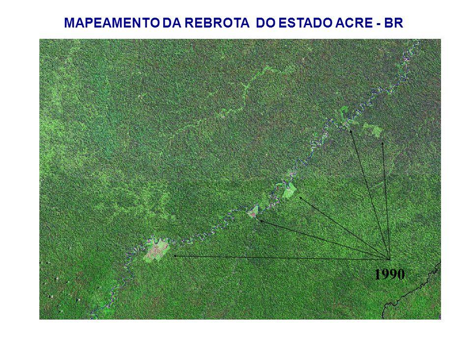 MAPEAMENTO DA REBROTA DO ESTADO ACRE - BR 1990