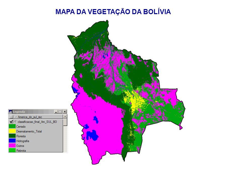 MAPA DA VEGETAÇÃO DA BOLÍVIA