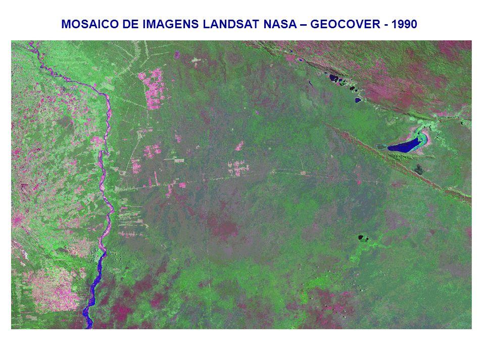 MOSAICO DE IMAGENS LANDSAT NASA – GEOCOVER - 1990
