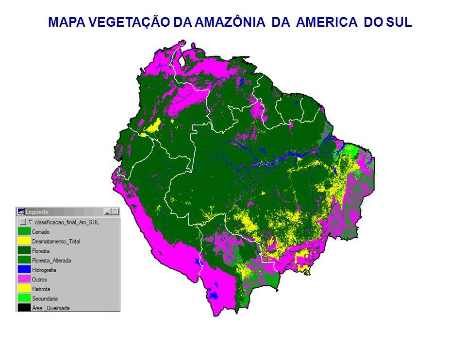 MAPA VEGETAÇÃO DA AMAZÔNIA DA AMERICA DO SUL