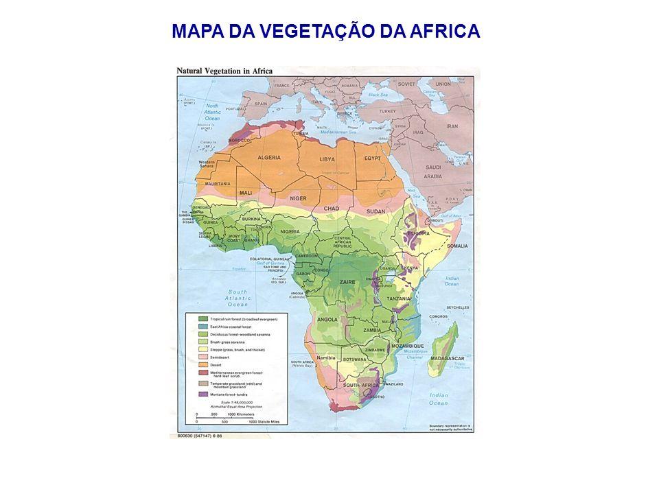 MAPA DA VEGETAÇÃO DA AFRICA