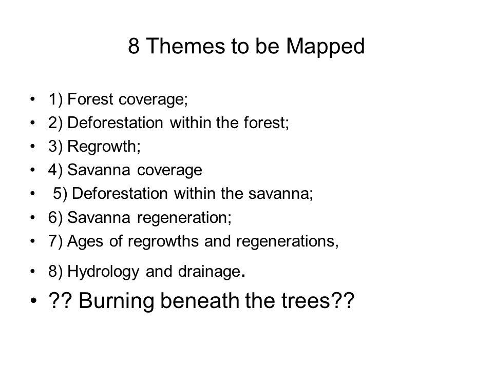 Resolution of Deforestation at Yanomami Park: 15 m2