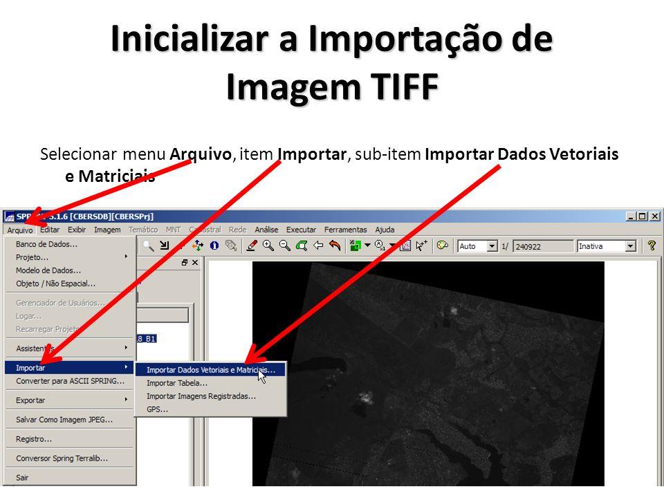 Importar as Imagens CBERS CCD Selecionar os arquivos CBERS_2B_CCD..._BAND2.tif CBERS_2B_CCD..._BAND3.tif CBERS_2B_CCD..._BAND4.tif Abrir os arquivos Selecionar Arquivo Definir tipo de arquivo TIFF/GEOTIFF Selecionar diretório C:\Dados\CBERS\CCD\157_118