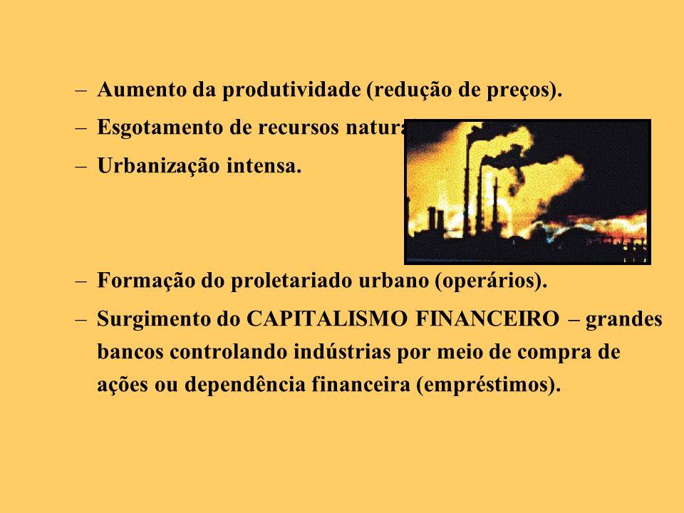 –Aumento da produtividade (redução de preços). –Esgotamento de recursos naturais. –Urbanização intensa. –Formação do proletariado urbano (operários).