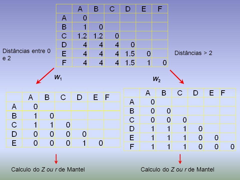 Distâncias entre 0 e 2 Distâncias > 2 W1W1 W2W2 Calculo do Z ou r de Mantel