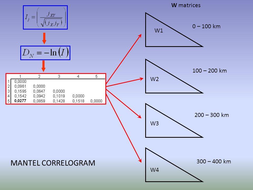 W1 W2 W3 W4 0 – 100 km 100 – 200 km 200 – 300 km 300 – 400 km W matrices MANTEL CORRELOGRAM