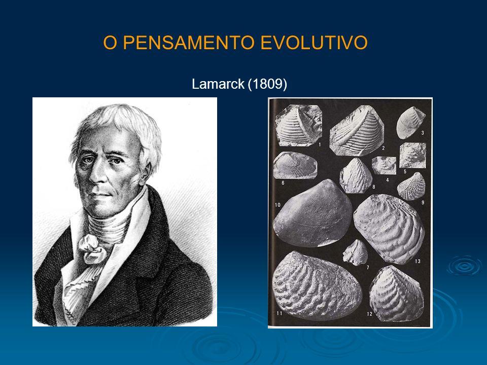 Lamarck (1809) O PENSAMENTO EVOLUTIVO