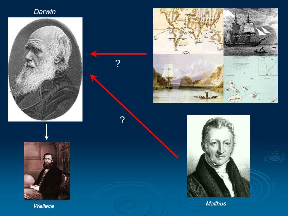 Darwin Malthus Wallace ? ?
