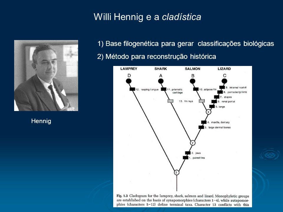 Hennig Willi Hennig e a cladística 1) Base filogenética para gerar classificações biológicas 2) Método para reconstrução histórica