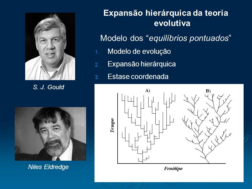 Expansão hierárquica da teoria evolutiva Modelo dos equilíbrios pontuados 1. Modelo de evolução 2. Expansão hierárquica 3. Estase coordenada S. J. Gou