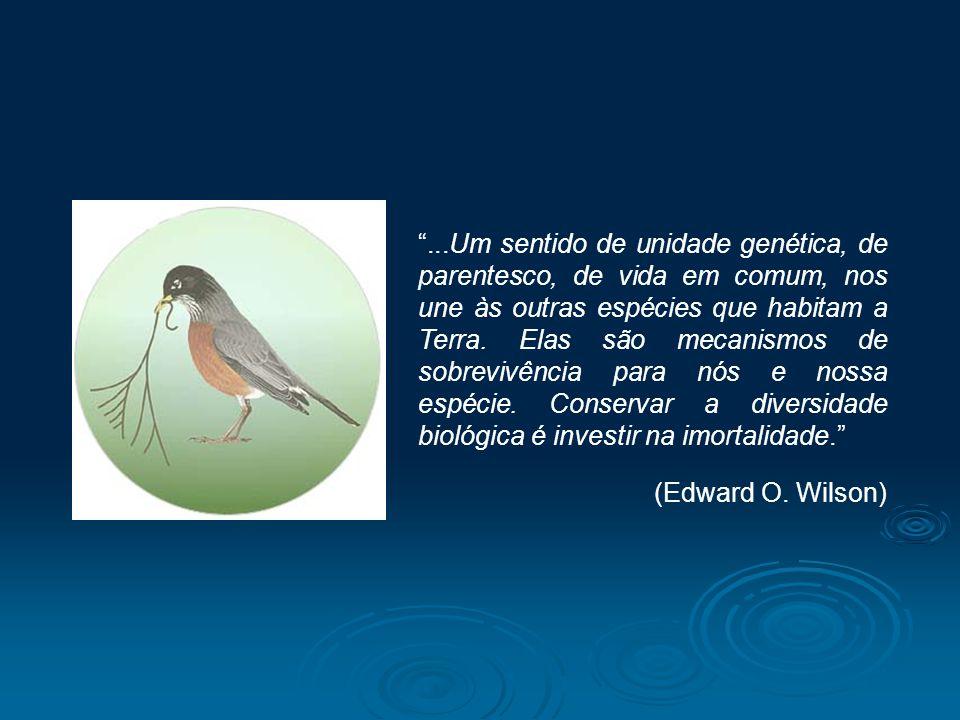 ...Um sentido de unidade genética, de parentesco, de vida em comum, nos une às outras espécies que habitam a Terra. Elas são mecanismos de sobrevivênc