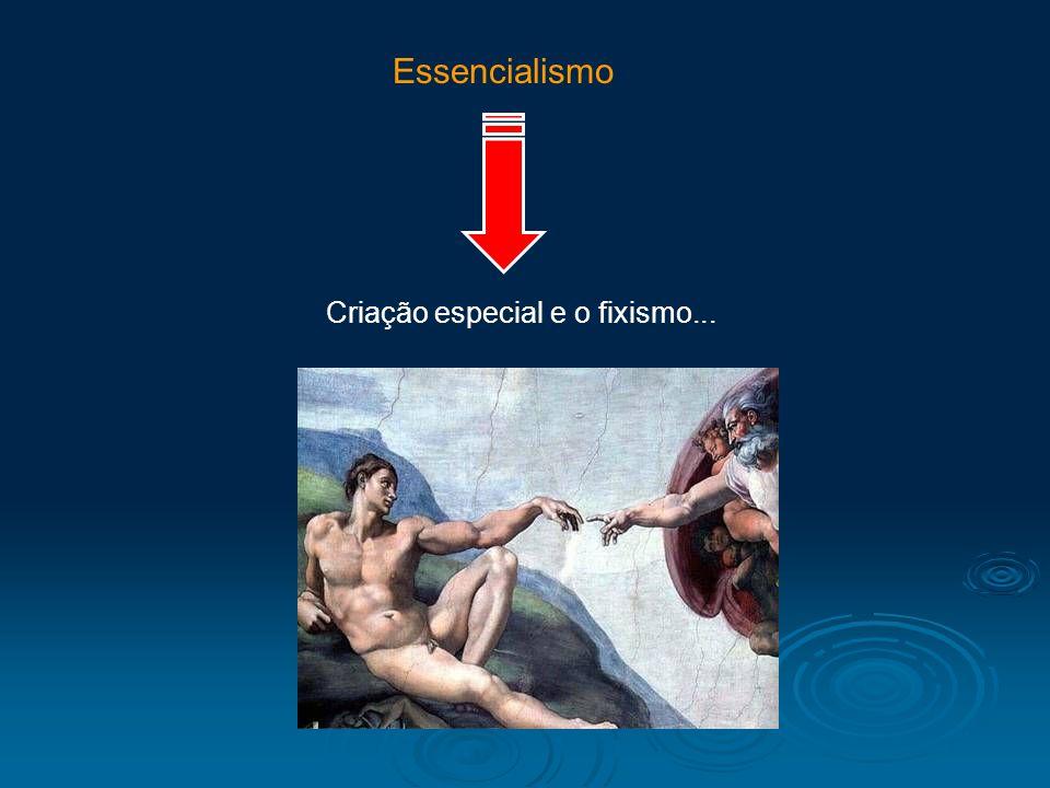Criação especial e o fixismo... Essencialismo