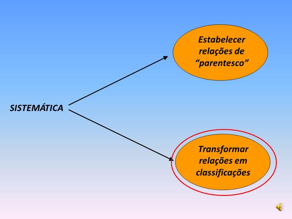 SISTEMÁTICA Transformar relações em classificações Estabelecer relações de parentesco