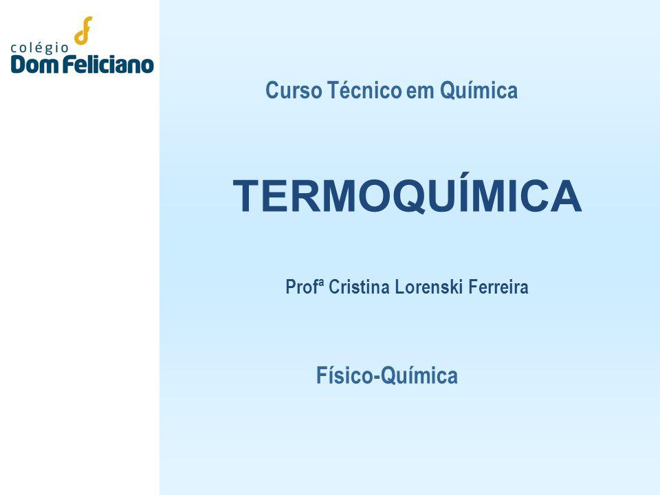 TERMOQUÍMICA Profª Cristina Lorenski Ferreira Curso Técnico em Química Físico-Química