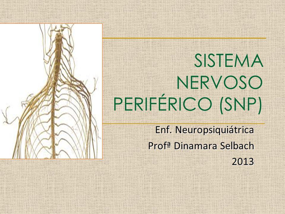 SISTEMA NERVOSO PERIFÉRICO (SNP) Enf. Neuropsiquiátrica Profª Dinamara Selbach 2013