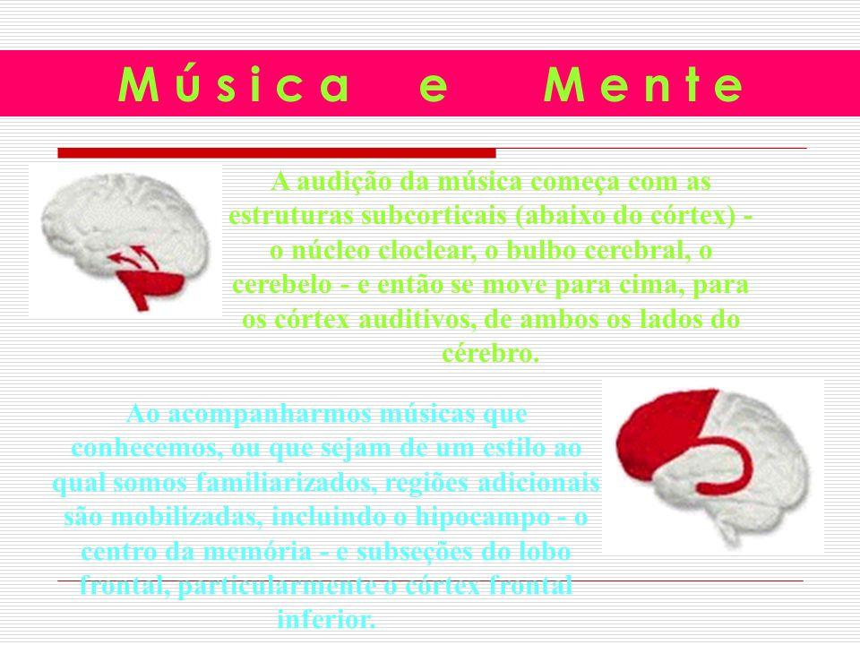 A audição da música começa com as estruturas subcorticais (abaixo do córtex) - o núcleo cloclear, o bulbo cerebral, o cerebelo - e então se move para cima, para os córtex auditivos, de ambos os lados do cérebro.