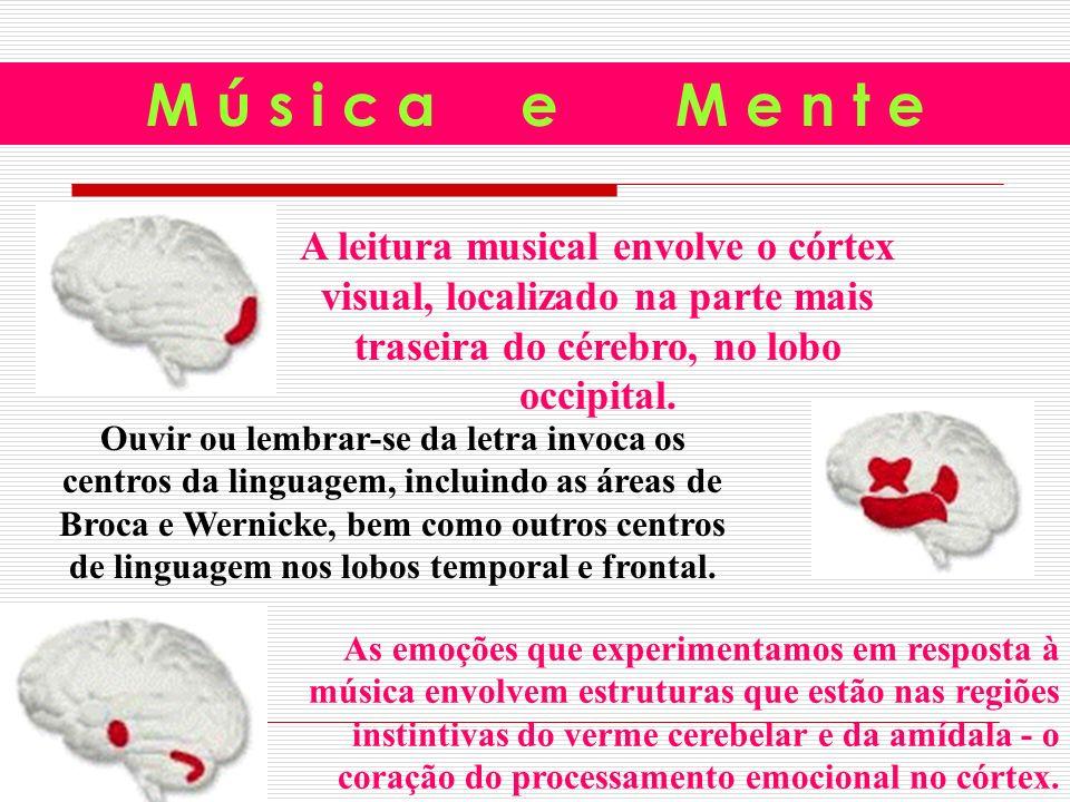 A leitura musical envolve o córtex visual, localizado na parte mais traseira do cérebro, no lobo occipital.