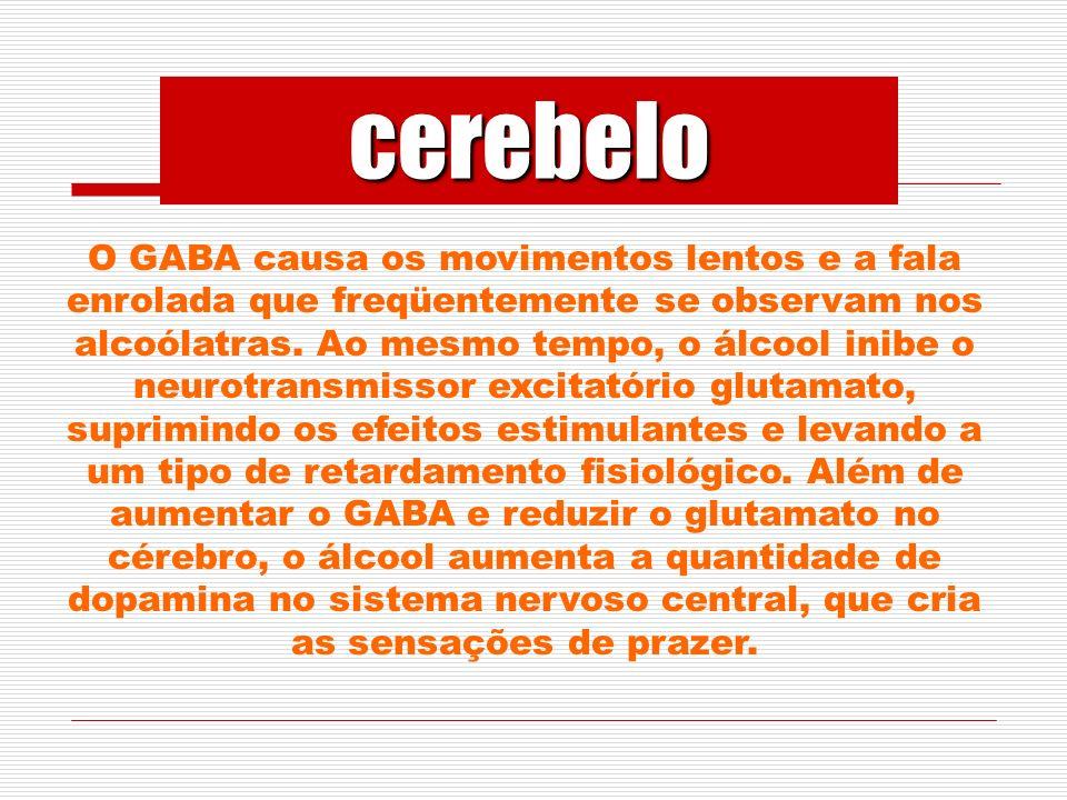 O GABA causa os movimentos lentos e a fala enrolada que freqüentemente se observam nos alcoólatras.
